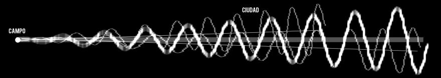 CAMPO-CIUDAD2